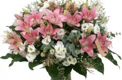 פרחי המושב